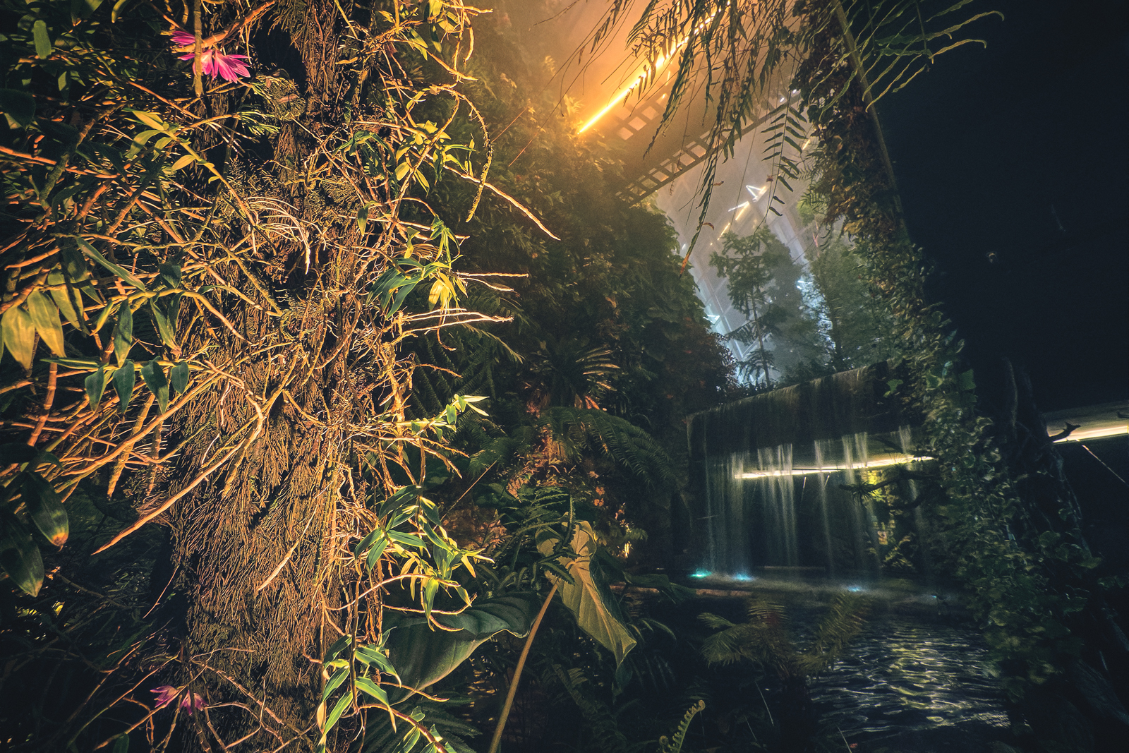 Cloud Forest Gardens by the Bay at Night
