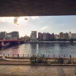Bridge in Sumida Park Tokyo